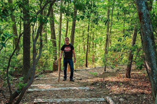 هوليداي إن آشفيل - بيلتمور إيست: Hotel's Nature Walking Trail - Peaceful!