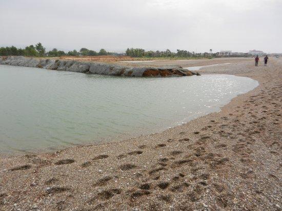 Club Calimera Serra Palace : Het strand en de rivier