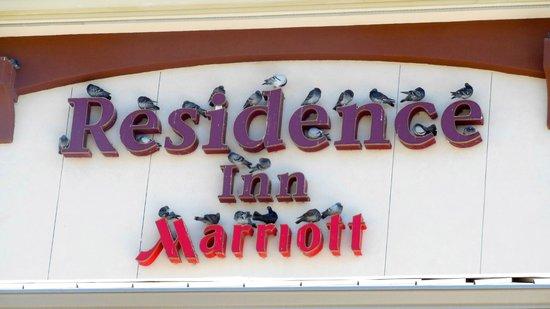 Residence Inn San Diego Oceanside : Hotel