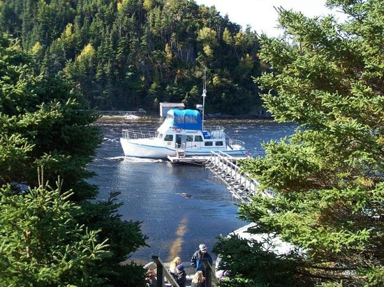 Woody Island, Canada: MV Merasheen at Sound Island