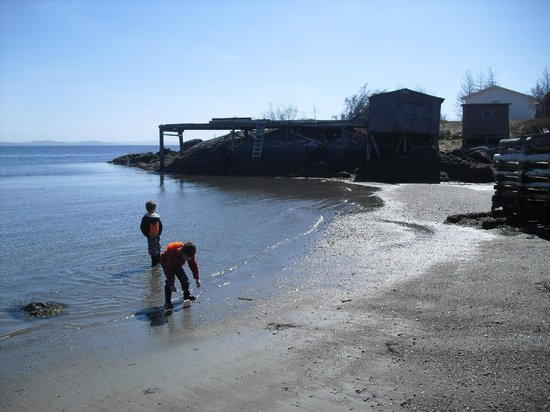 Woody Island, Canadá: Kids Playing at the Beach