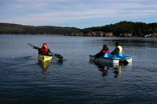 Woody Island Resort Newfoundland