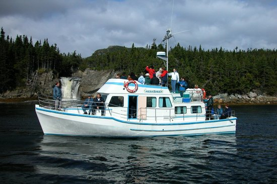 Woody Island Resort: The MV Merasheen