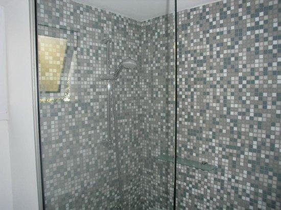 Senator Hotel Apartments: shower