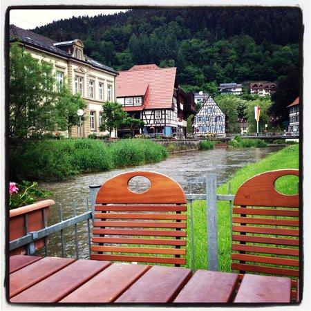 Zur Alten Brucke: View from the biergarten