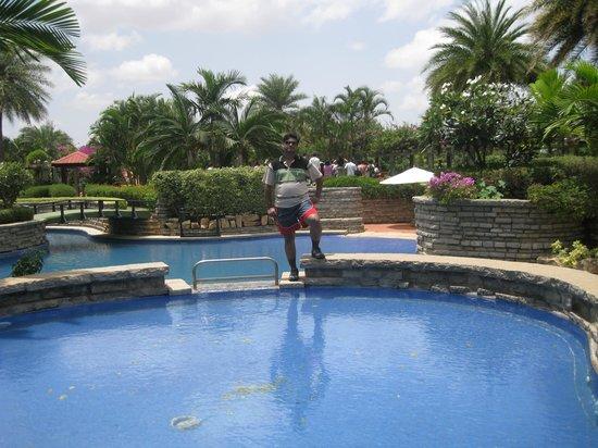 Swiming Pool Picture Of Angsana Oasis Spa Resort Bengaluru Tripadvisor