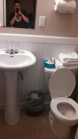 Alouette Beach Resort: The sink and toilet