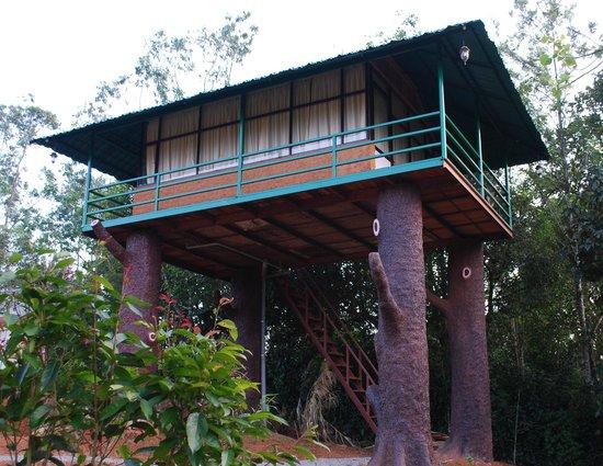 Hotel Eletaria Resort: tree house