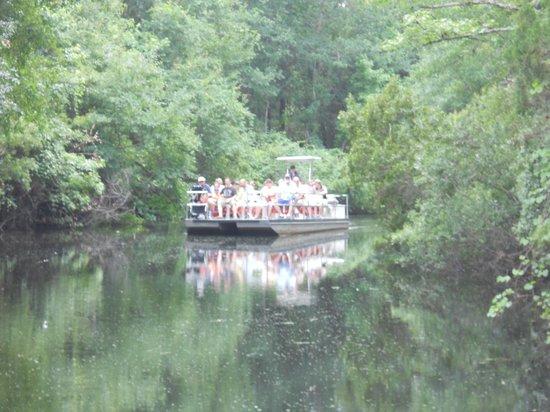 Ellie Schiller Homosassa Springs Wildlife State Park: Boat Trip to Park