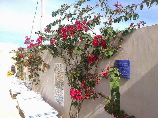 Dar Hamza Djerba: Françoise75