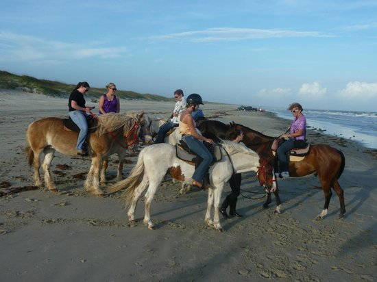 Equine Adventures: This was part of our group just before we turned around