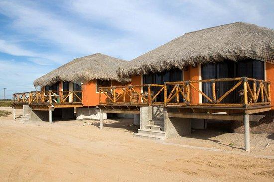 Hotel Villas Mar Y Arena Ecotours Puerto San Carlos Mexico Foto S Reviews En Prijsvergelijking Tripadvisor