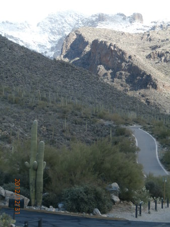 Santa Catalina Mountains: If you're into hiking and terrific scenery, this is Pima Canyon Trail.
