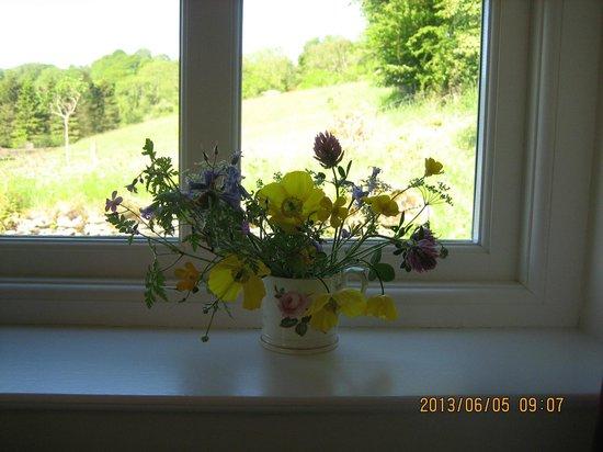 Gilpin Mill: 部屋の窓から2