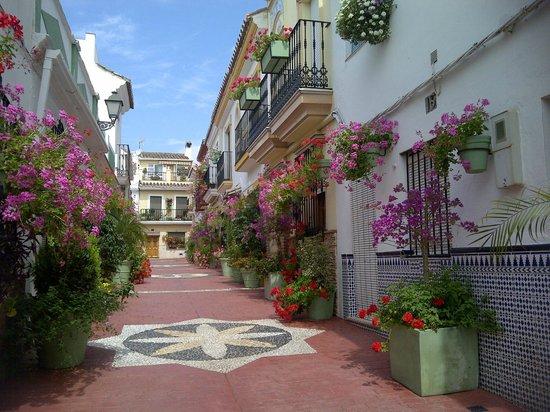 เอสเตโปนา, สเปน: Calle Portado