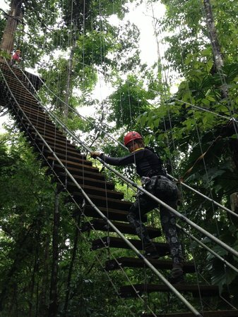 Bastimentos Sky Zipline Canopy Tour: STAIR