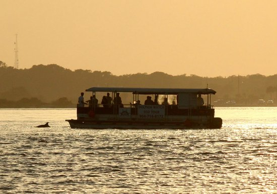 Dolphin Water Tours LLC : Sunset Tour