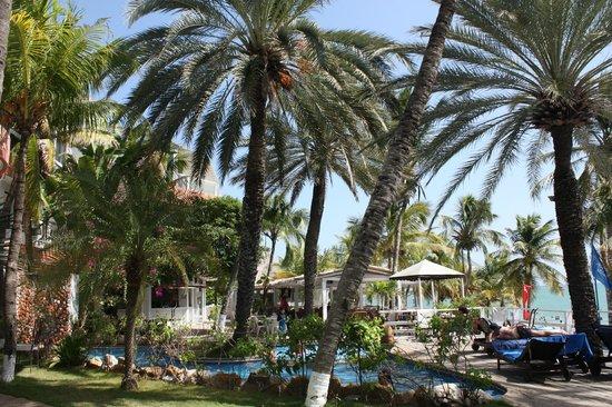 Hotel Windsurf Paradise: Décembre 2012