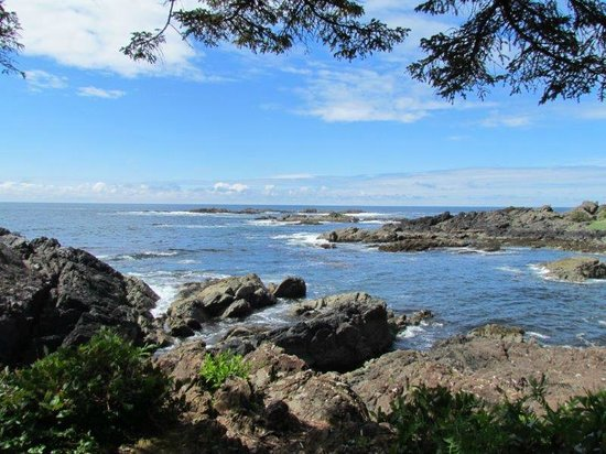 Black Rock Oceanfront Resort: Wild Pacific Trail