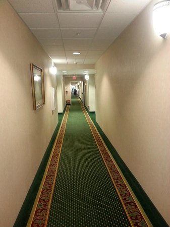 Homewood Suites by Hilton Sacramento-Roseville: Hallway