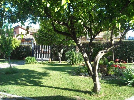 Giardino picture of giardino degli aranci b b rome tripadvisor - Giardino degli aranci frattamaggiore ...
