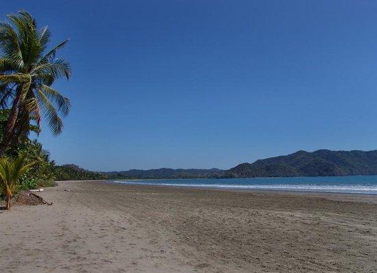 Bahia de los Delfines: Beach