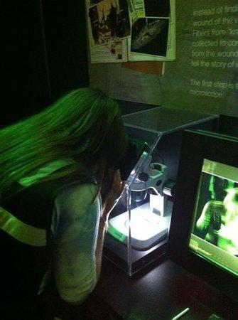 CSI: The Experience : csi