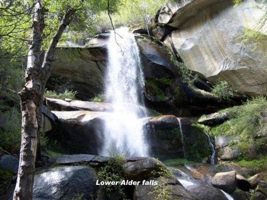 Mountain Top Bed & Breakfast: Alder Creek Falls