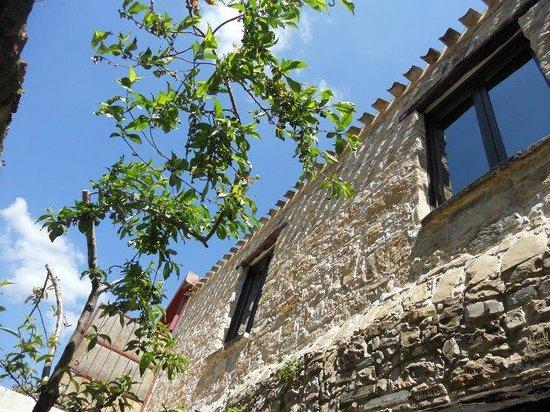 Collinas, Italy: prospetto posteriore