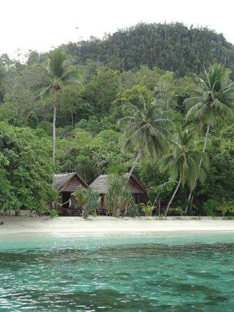 Raja Ampat Biodiversity Eco Resort: The rooms