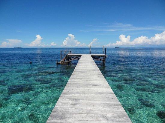 Raja Ampat Biodiversity Eco Resort: The Biodiversity jetty