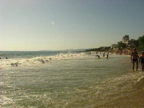 Alaiye Resort & Spa Hotel: Plaża