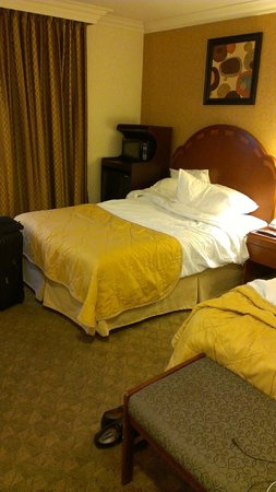 Ramada by Wyndham Los Angeles/Downtown West: my two beds