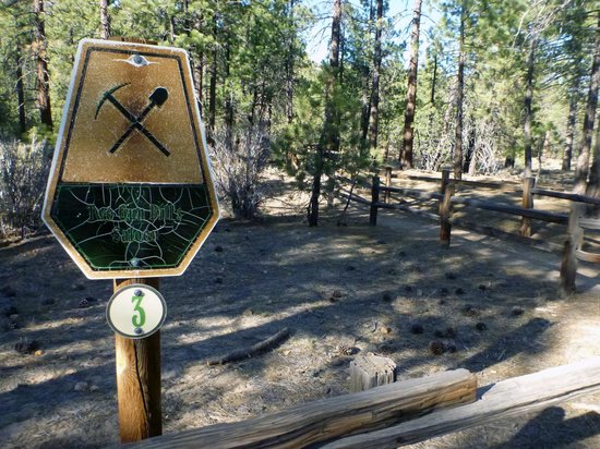 Holcomb Valley Tour: This marker leads you to the remains of a saloon (or a cabin)