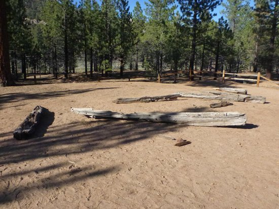 Holcomb Valley Tour: The REMAINS of the Saloon (really just a cabin)