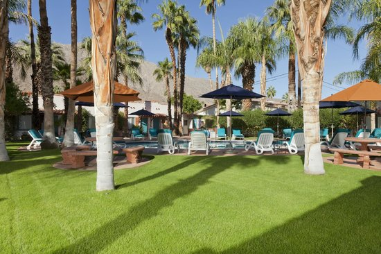 Gypsy Rose: Large Grounds Palm Trees