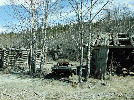 Kluane Bed & Breakfast : Ghost Town of Silver City
