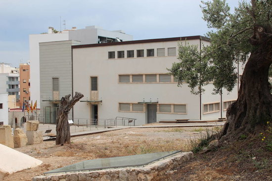 Museu Puig Molin