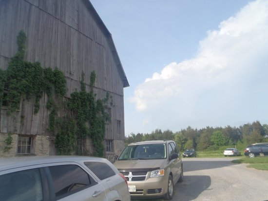 The County Cider Company: parking area
