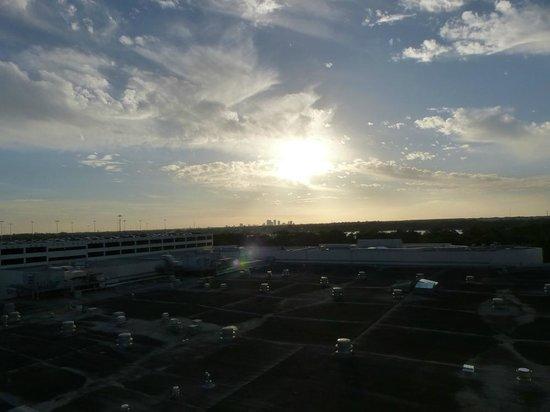 Seminole Hard Rock Hotel Tampa: Zimmeraussicht: Viel (Park)Dach und etwas Skyline
