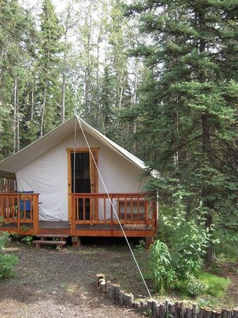 Sven's Basecamp Hostel: Shared Alaskan Trapper Cabin