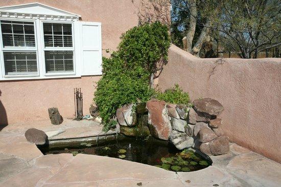 Corrales, NM: Lilly Pond next