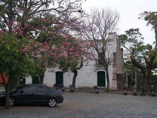Museo Municipal Dr. Bautista Rebuffo: Museo