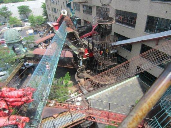 1st Floor By Aquarium Picture Of City Museum Saint