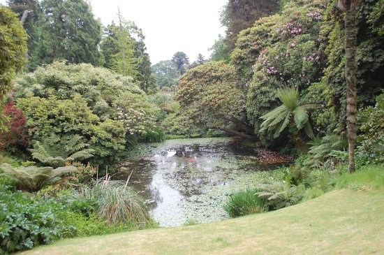 The Lost Gardens of Heligan: Jungle