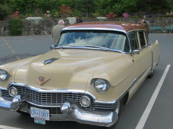 Classic Car Tours: Fancy Nancy