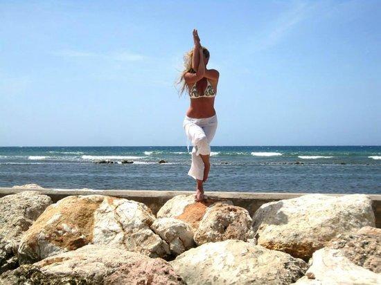 Half Moon: Art of Motion Yoga Retreat- Garudasana