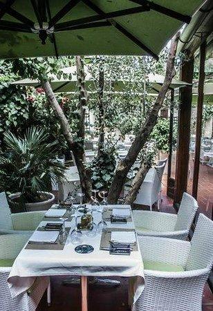 La salle à  manger : Terrasse 1