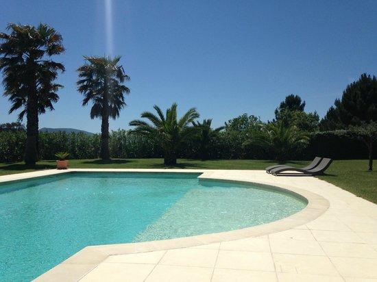 Villa Sophie : La piscine et la végétation