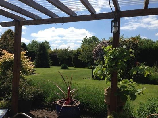 Buckle House: uitzicht in de tuin